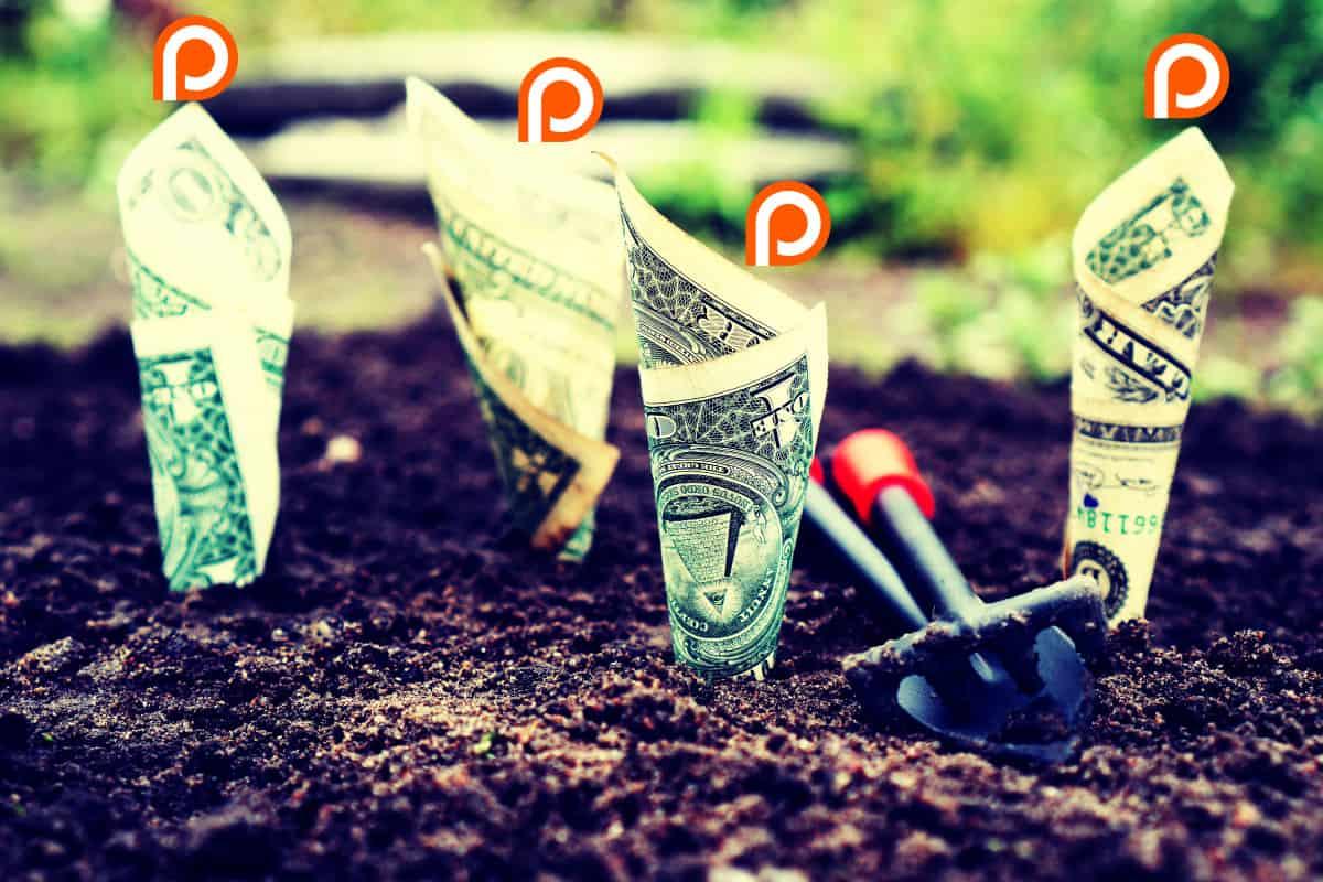 Patreon Diversify Income