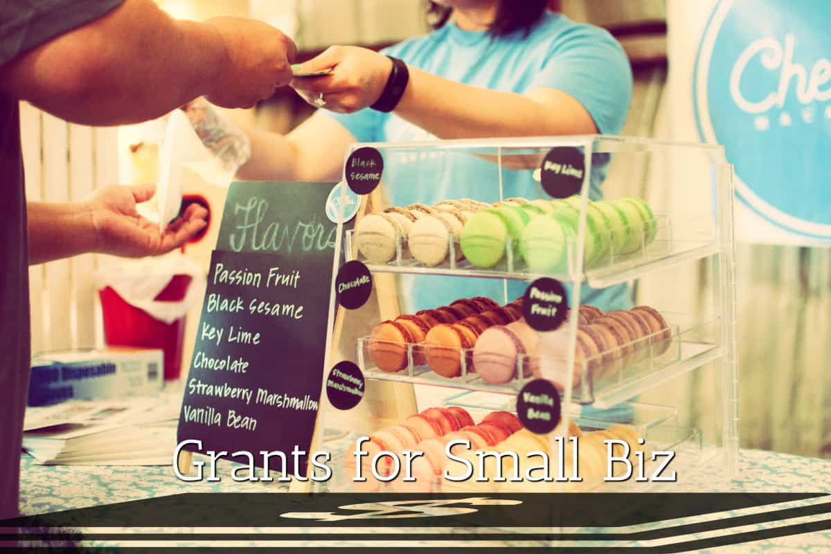 Small Biz Grants